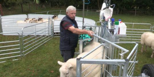 Shepherdsmate - Sheep Handling Equipment