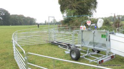 Mobile Sheep Handling Race with 3 Way Drafting and footbath