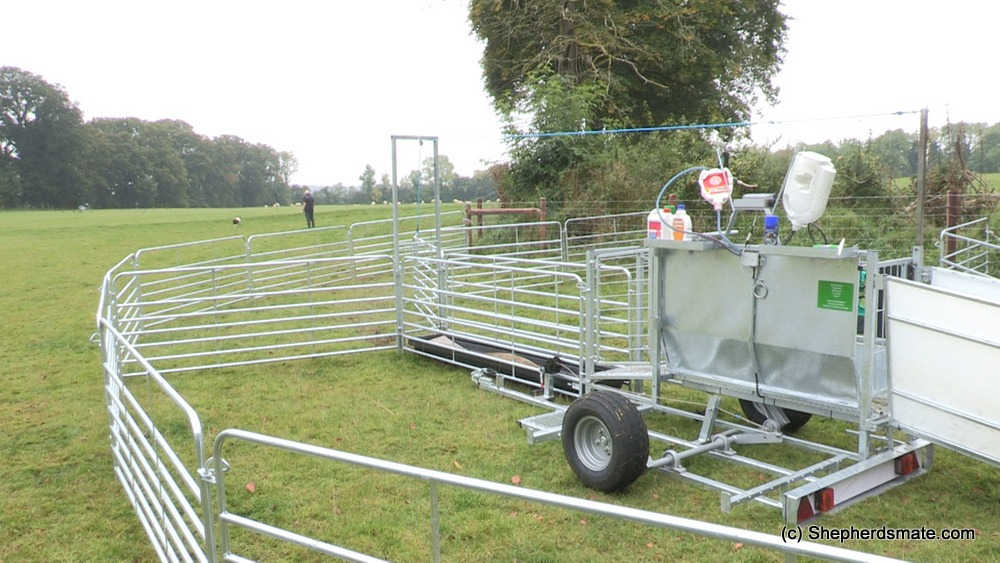 Mobile Sheep Handling Race with 3 Way Drafting and footbath