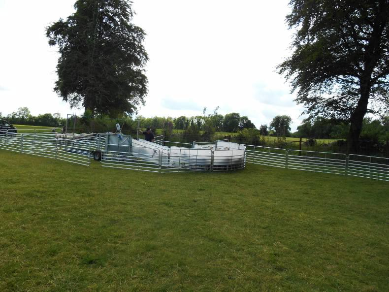 Shepherdsmate Mobile or Fixed Yard Sheep Handling Race with 3 way Drafting and optional features and equipment