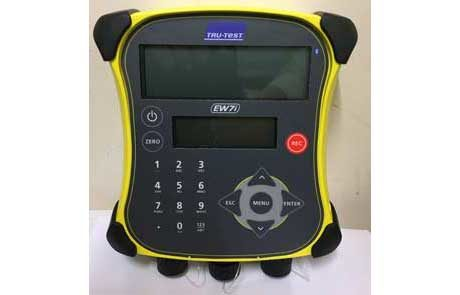 sheep handling race compatible with Tru-Test digitial weighing equipement